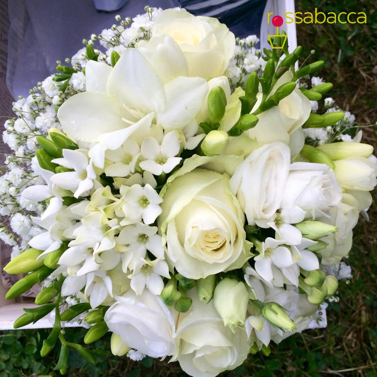 Rose bianche rossabacca for Nomi di fiori bianchi